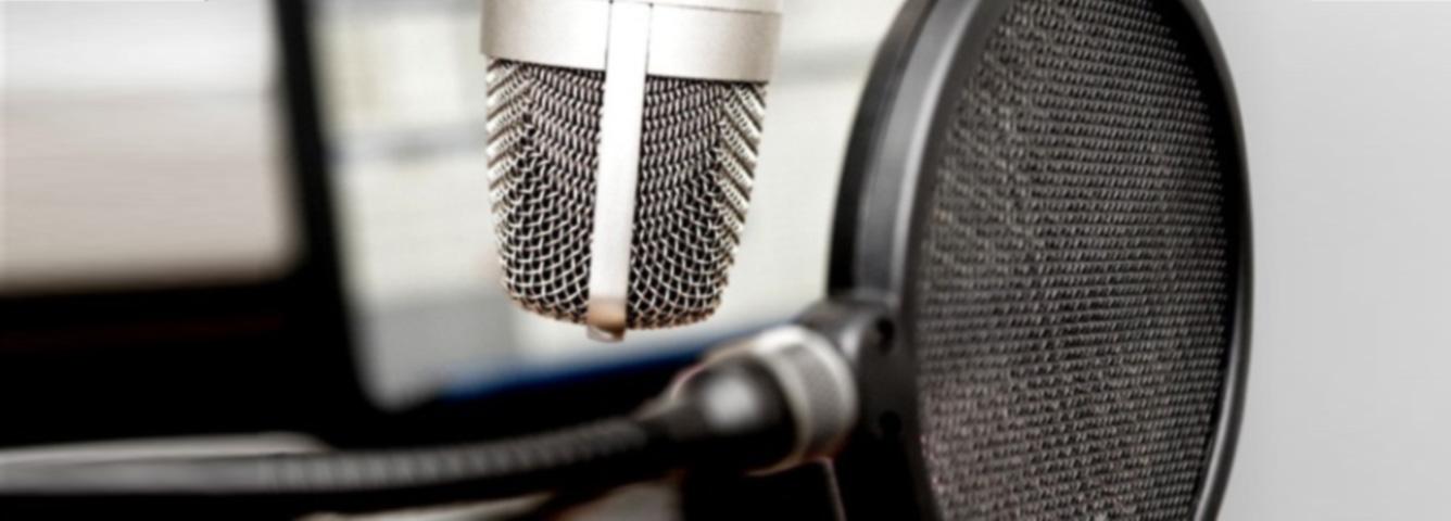Voice Casting